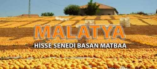 malatya pay senedi e1531849230848 - MalatyaHisse Senedi Basan Matbaa MalatyaPay Hisse Senedi Basımı
