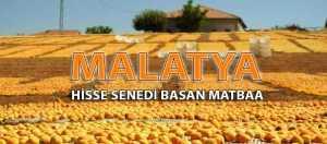 malatya pay senedi e1531848929833 300x132 - malatya-pay-senedi