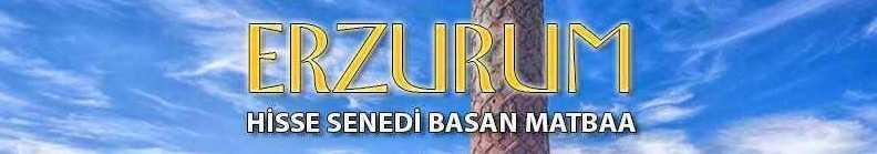 erzurum e1607081057748 - Erzurum Hisse Senedi Basan Matbaa Pay Hisse Senedi Basımı
